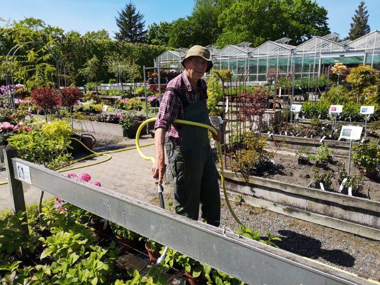 Ole vander planter sidst i maj 2020